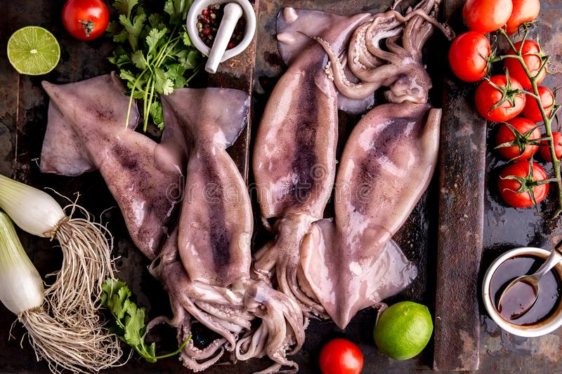 Fresh raw seafood squid calamary and ingredients on dark background. Top view royalty free stock photo