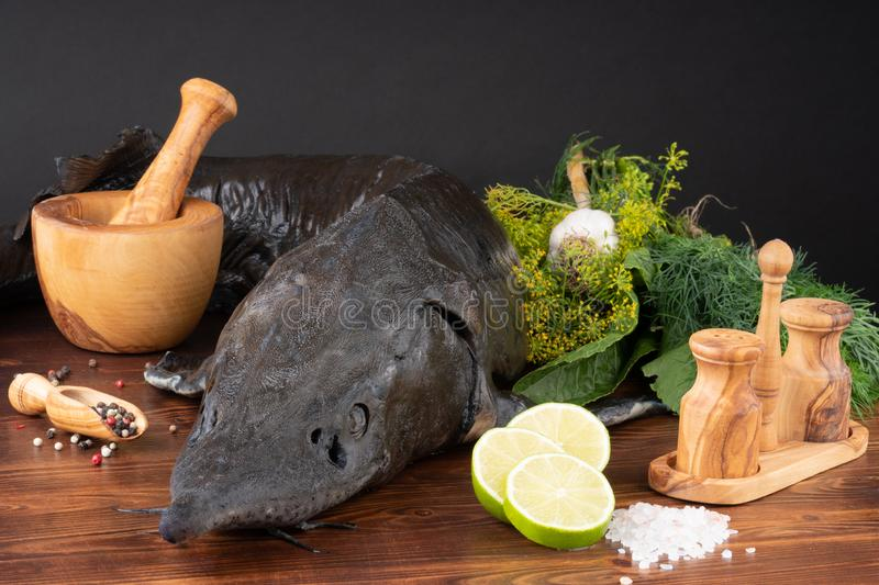 Fresh raw sturgeon fish on the table with lemon pepper garlic. clouse up stock image