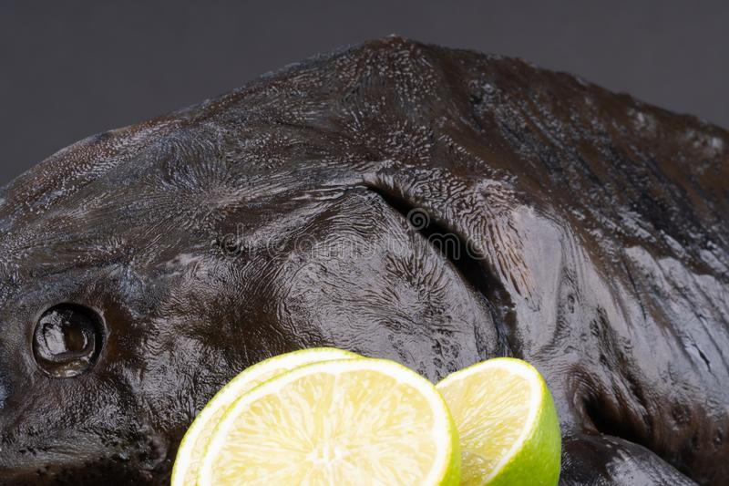 Fresh raw sturgeon fish on the table with lemon pepper garlic. clouse up.  royalty free stock photography
