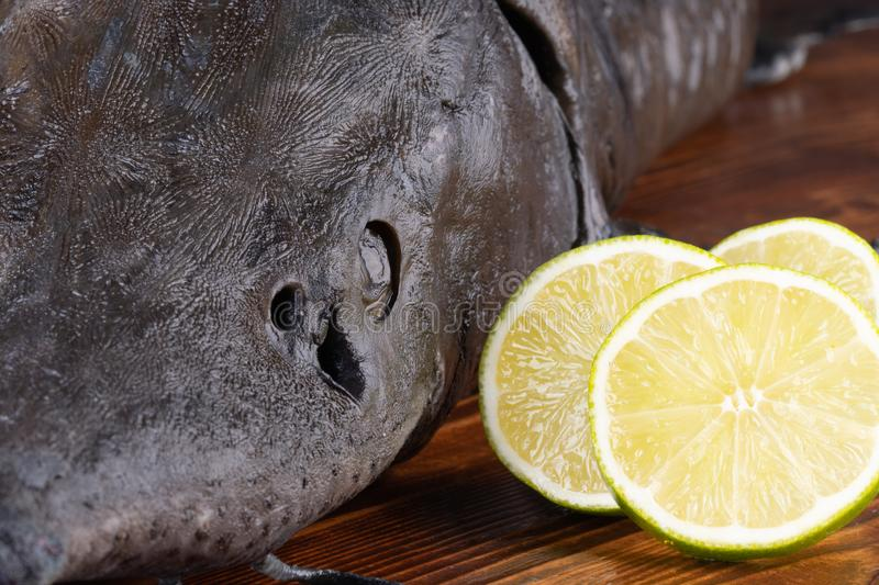 Fresh raw sturgeon fish on the table with lemon pepper garlic. clouse up royalty free stock photos