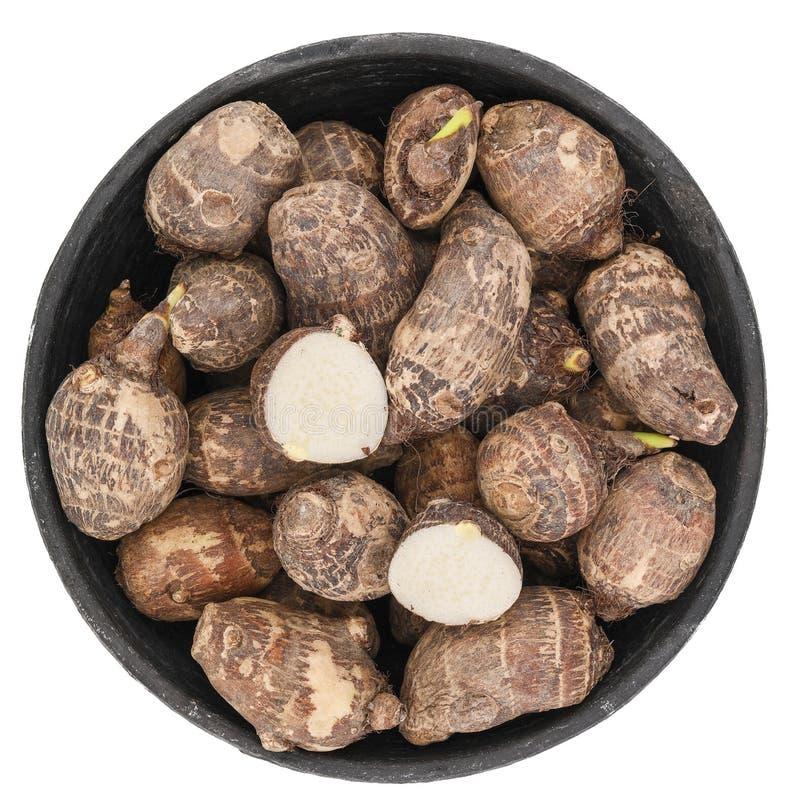 Fresh Raw Taro Vegetable stock image. Image of horizontal