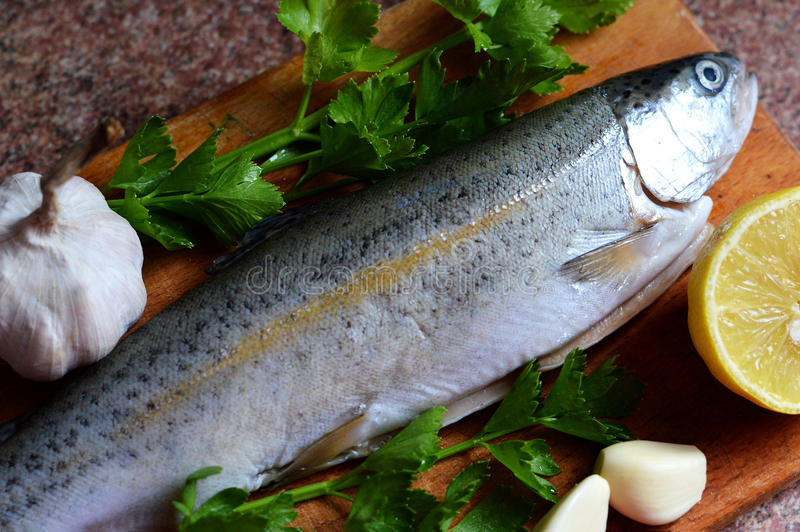 Fresh raw trout on kitchen board stock images