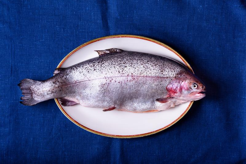 Fresh raw trout on a plate, top view royalty free stock photos