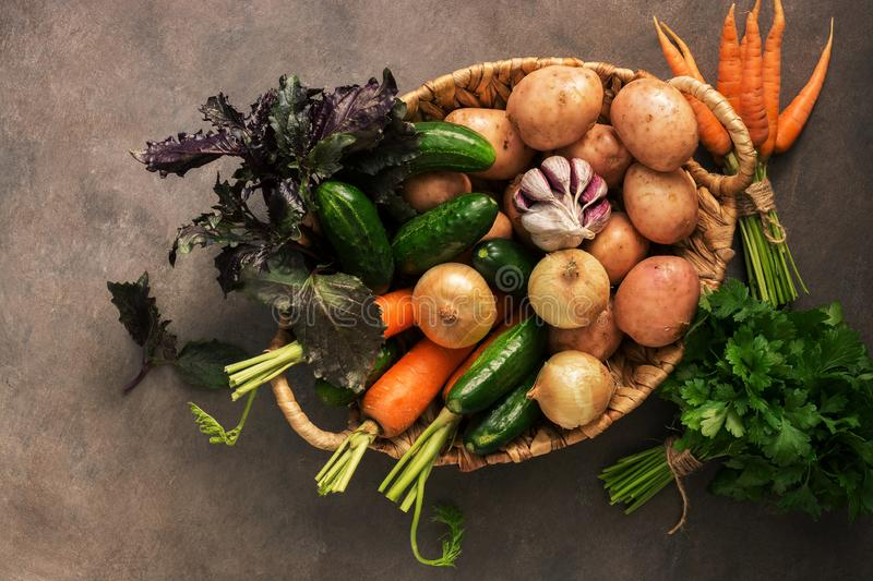 Fresh raw vegetables of the new crop, potatoes, onions, carrots, garlic, cucumbers, basil and parsley in a basket on a dark rustic stock images