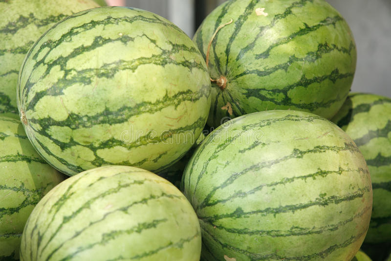 Download Fresh raw watermelon stock photo. Image of nature, fruit - 11330158