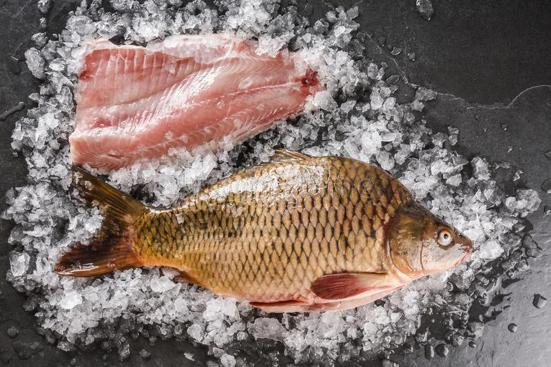 Fresh raw whole mirror carp and fish fillet with spices, lemon on ice over dark stone background. Creative layout made of fish. Seafood, top view, flat lay royalty free stock images