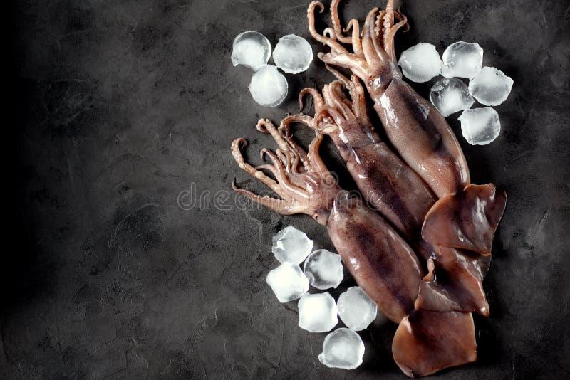 Fresh raw whole squid on a dark granite background. Top view. Copy space. Fresh raw whole squid on a dark granite background. Top view. food royalty free stock photo