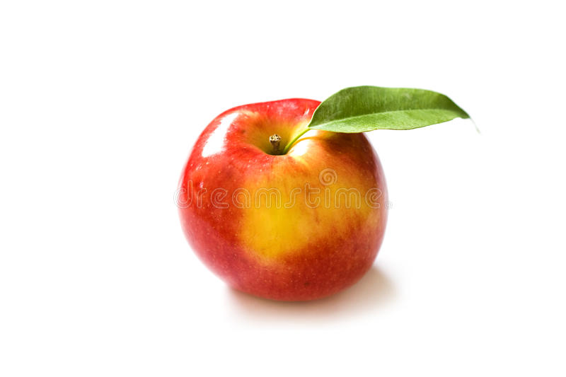 Download Fresh red apple stock image. Image of agriculture, market - 12917871