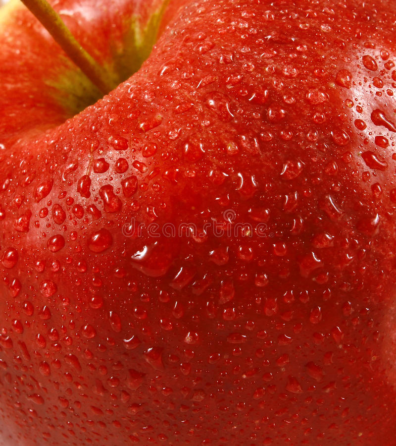 Fresh red apple. Close up royalty free stock images