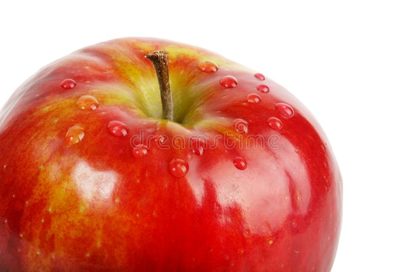 Download Fresh red apple stock photo. Image of apple, bright, foil - 9243738