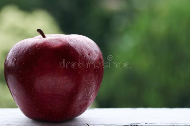 Red apple on a green background royalty free stock image