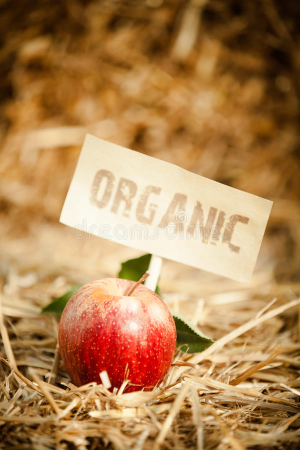 Free Fresh Red Apple On Straw, Tagged As Stock Image - 33386311