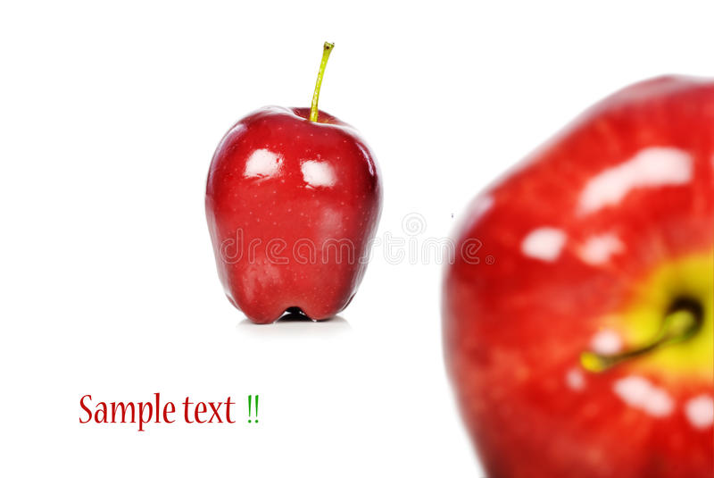 Download Fresh red apples stock image. Image of dieting, green - 13300471