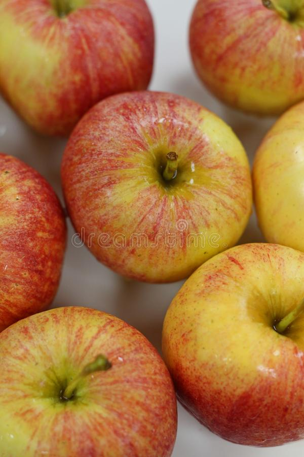 Fresh red apples. A batch of fresh red apples royalty free stock photos