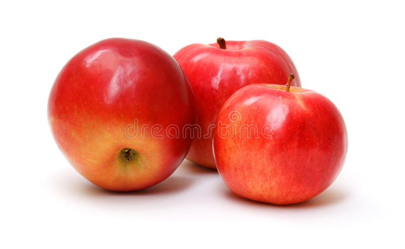 Download Fresh red apples stock image. Image of floral, fruit - 22964595