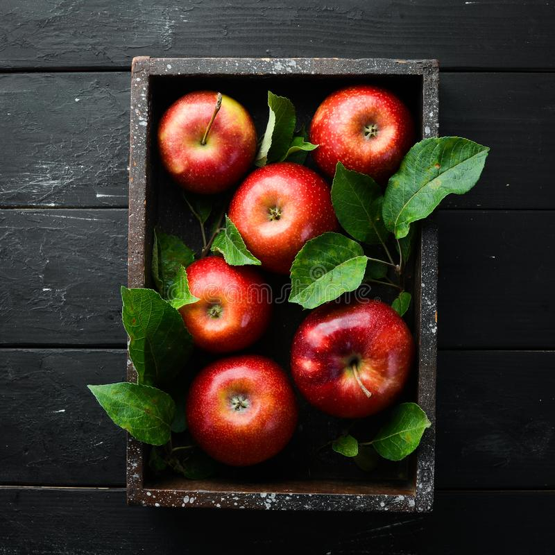 Free Fresh Red Apples With Green Leaves On A Black Background. Fruits. Top View. Stock Images - 164659964