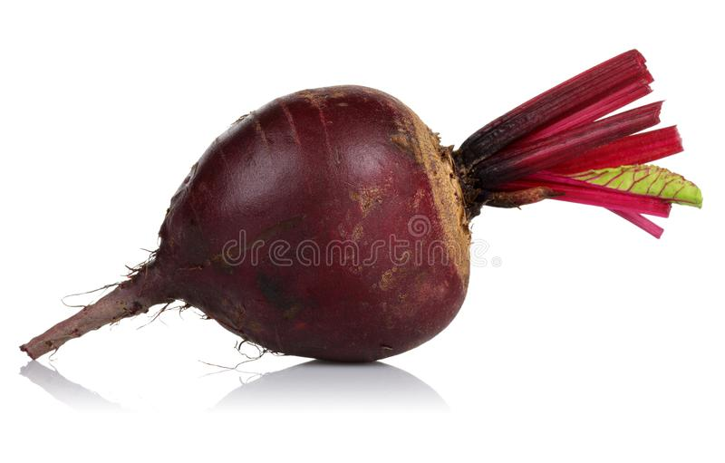 Fresh red beet isolated on white stock photos