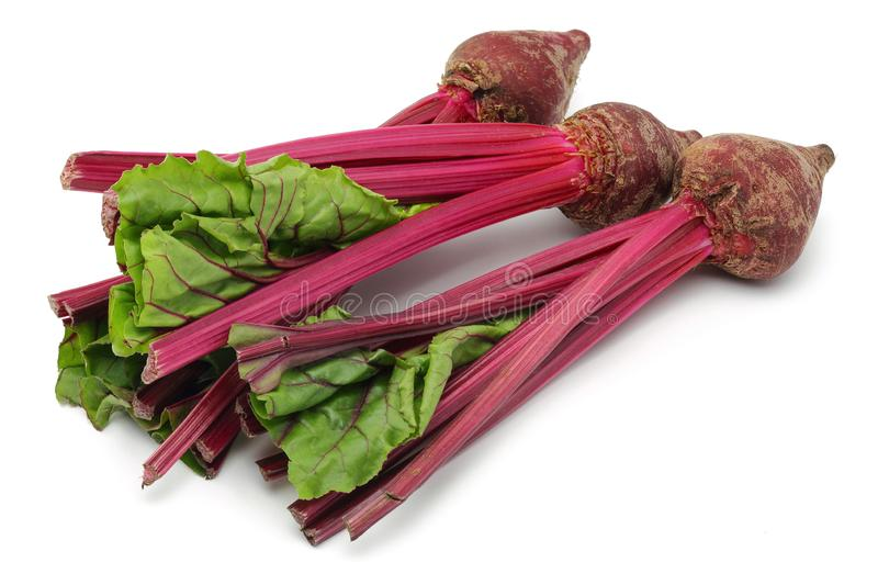 Fresh red beet roots with leaves royalty free stock images