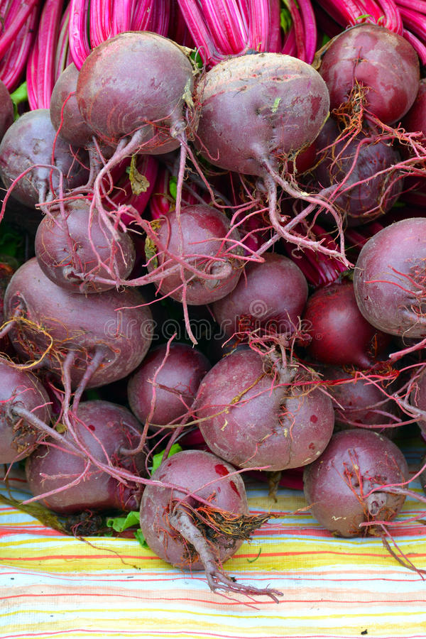 Fresh red beets royalty free stock photos