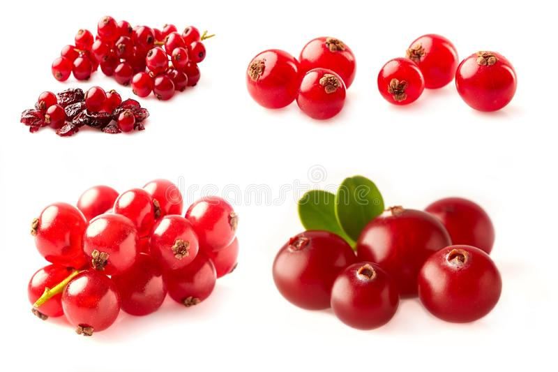 Fresh red berries compositions photographed closeup isolated on a white background Redcurrant, cranberry. Collection. - Image stock image