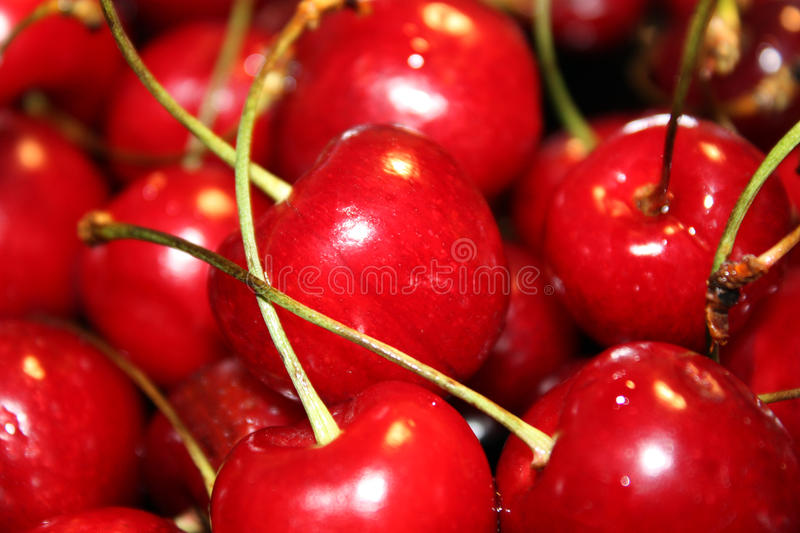 Fresh red cherry royalty free stock photo