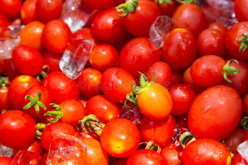 Fresh red cherry tomato with ice stock photography