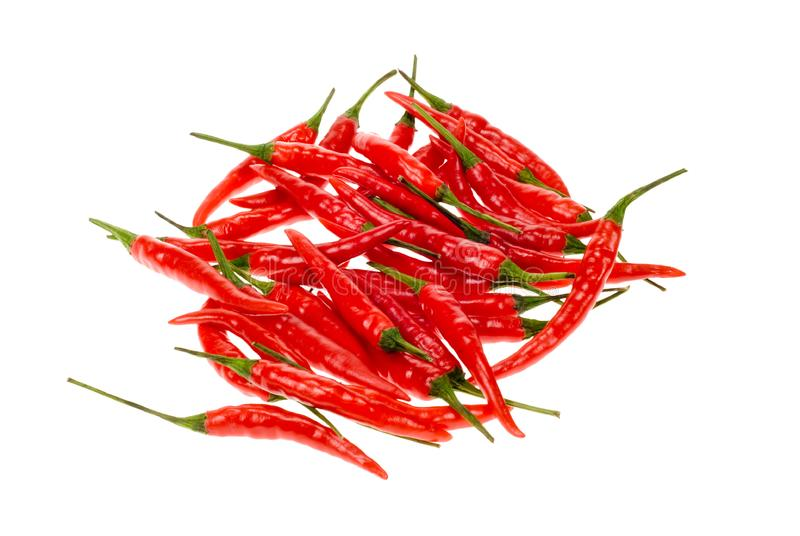 Fresh red chili peppers royalty free stock photo