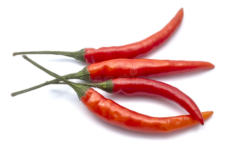 Fresh red chilli. Closeup on white background royalty free stock photography