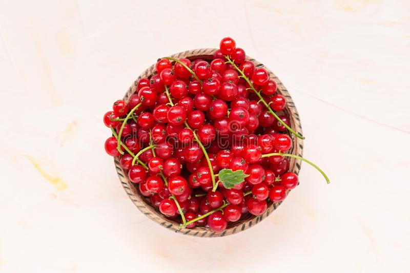 Fresh red currant berries in a bowl on a pink background stock image