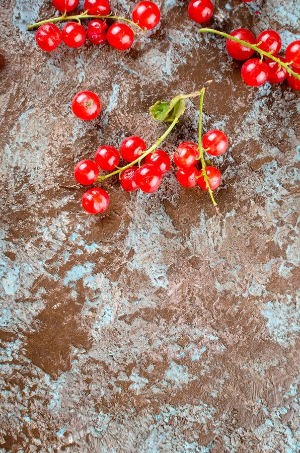 Fresh red currant berries. Ripe fresh red currant berries on dark rustic background top view, copy space royalty free stock photos