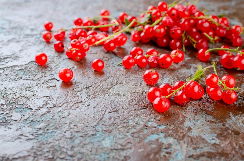 Fresh red currant berries. Ripe fresh red currant berries on dark rustic background top view, copy space stock photos