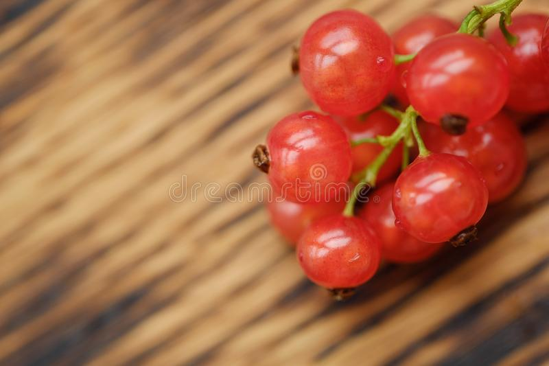 Fresh red currants are tasty and healthy royalty free stock photography