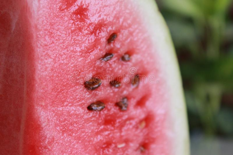 Closeup of Fresh red green watermelon on a plate with blurred background stock images