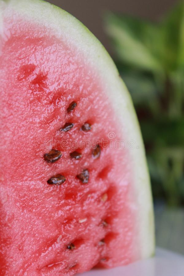 Closeup of Fresh red green watermelon on a plate with blurred background royalty free stock image