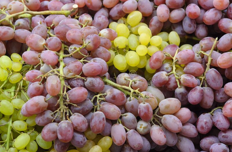 Fresh Red And Green Wine Grapes In Sale At The Market. Fruit Background royalty free stock images