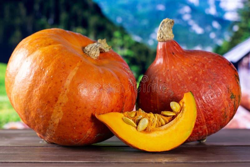 Fresh red kuri pumpkin hokkaido with country nature royalty free stock image