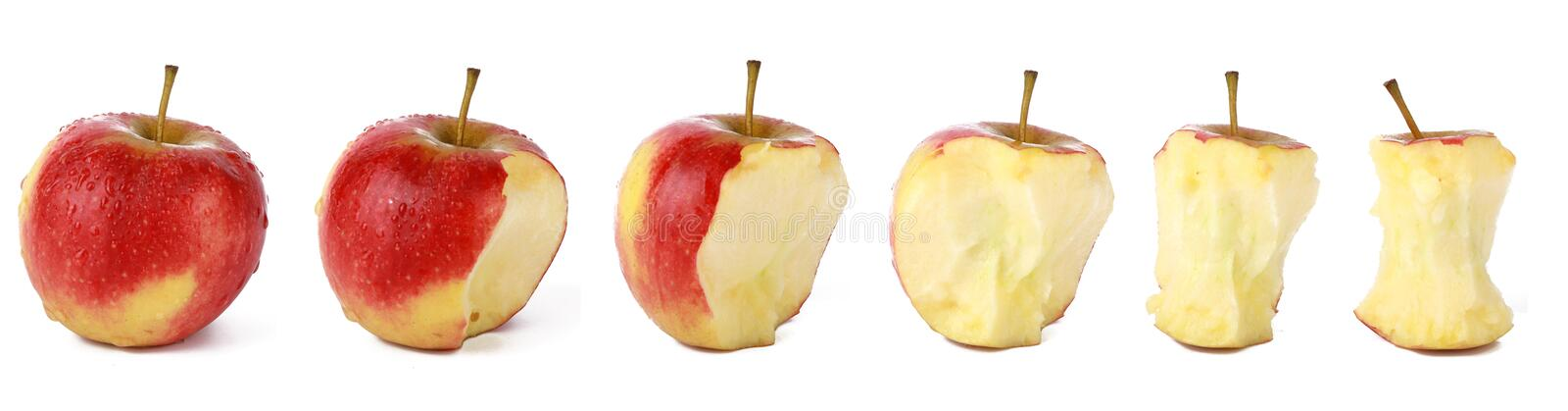 Fresh red natural aple is eaten - set of differents stages of eating an apple royalty free stock images