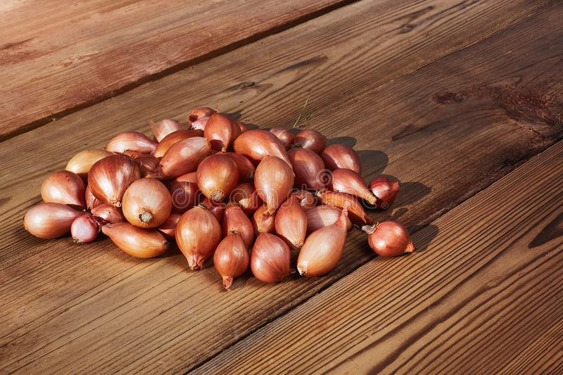Fresh Red onions composition lying on the wooden table. Free space for your text. royalty free stock photography