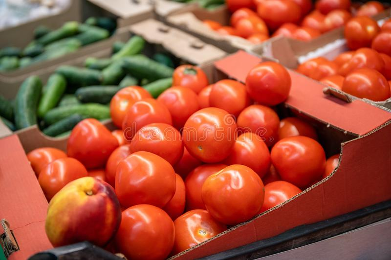 Fresh red organic tomatoes and other vegetables in farmers market or supermarket shelf, healthy food stock images
