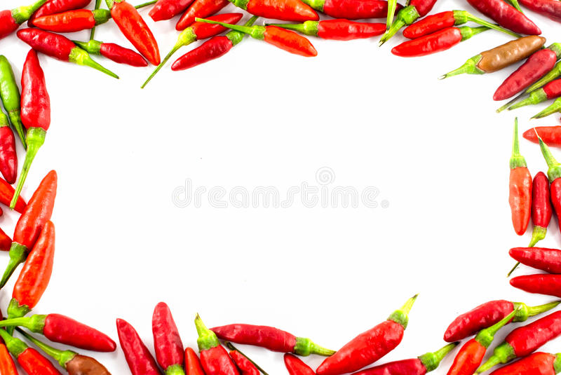 Download Fresh red pepper border stock photo. Image of mexico - 34395102