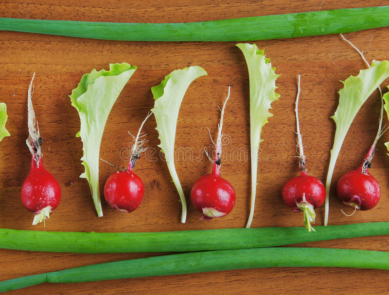 Download Fresh Red Radish And Salad Leaves On A Wooden Surface Stock Photo - Image: 31366986