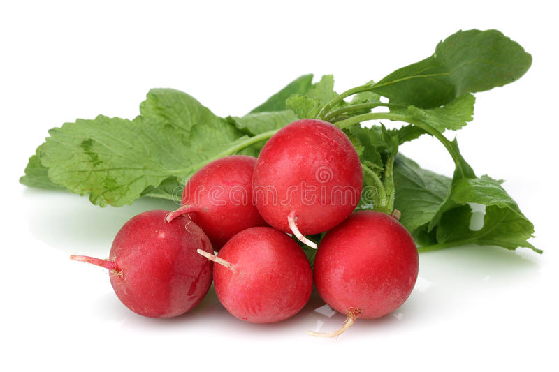 Fresh red radish stock photo