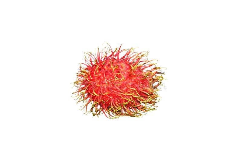 Fresh red rambutan. Isolated on white background royalty free stock photo