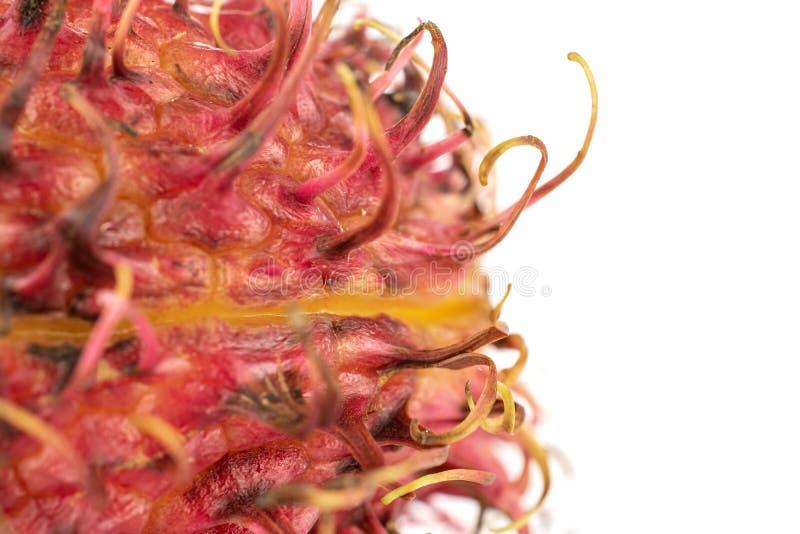 Fresh red rambutan  on white. One whole fresh red rambutan macro  on white background stock photo