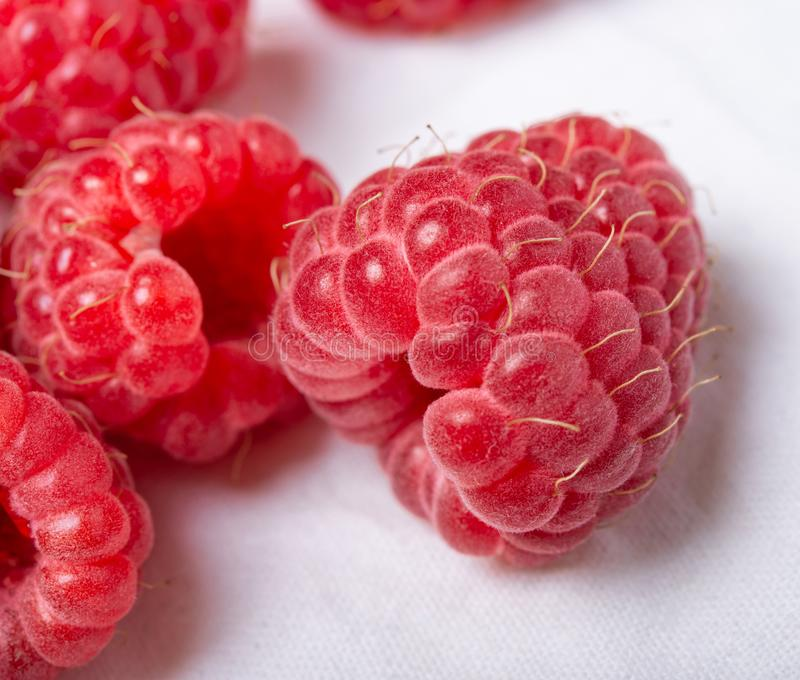 Fresh red raspberries on white background. Close up stock photography