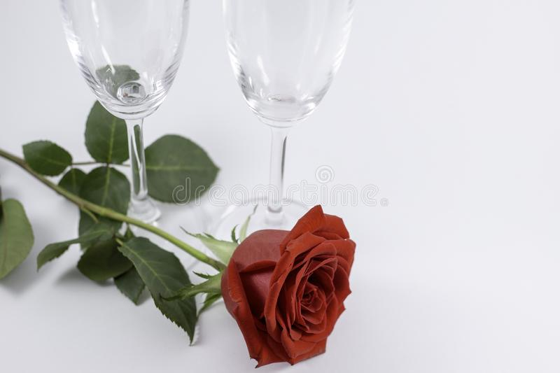 A fresh red rose big bud and petals with green leaves on white background and two champagne glasses stock images