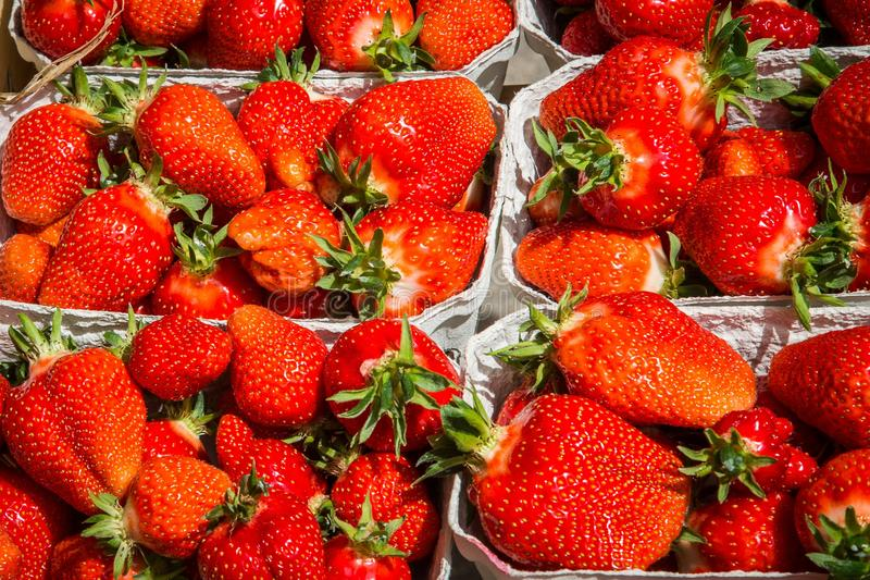 Fresh Red Strawberries Free Public Domain Cc0 Image