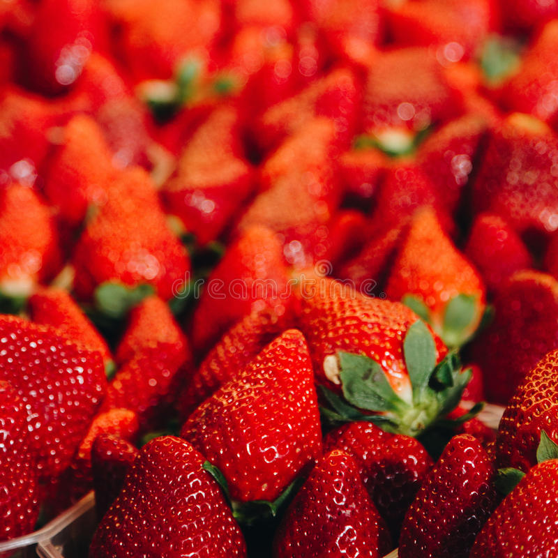 Download Fresh Red Strawberries Arranged In Baskets At Marketplace Stock Image - Image: 83723553