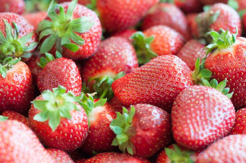 Fresh red strawberry close-up background. Texture strawberry close up stock image