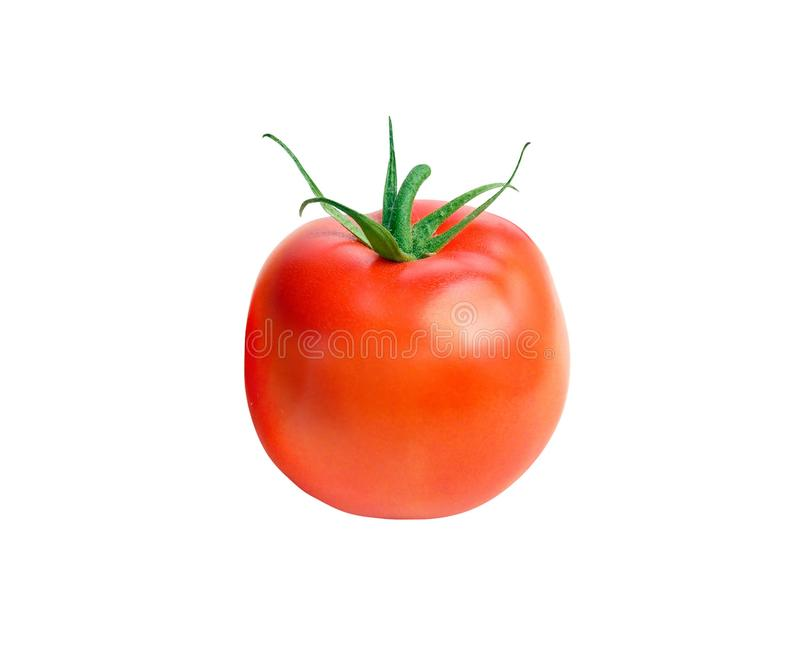 Fresh red tomato with green stem on white. Background royalty free stock image